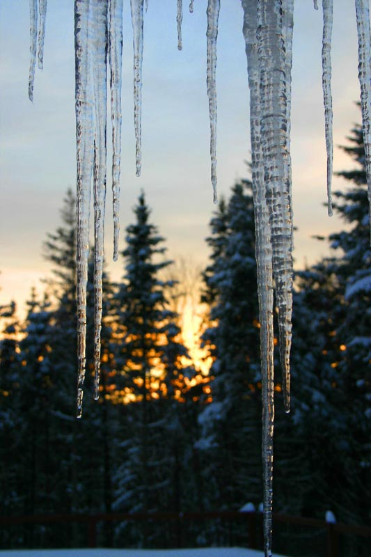 Photo of Sunset Icicles