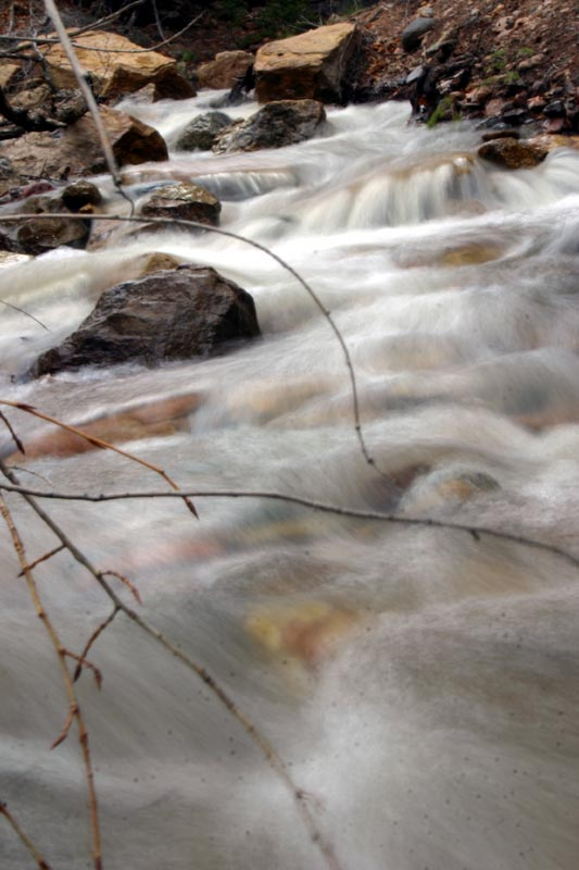 Photo of Creekbed