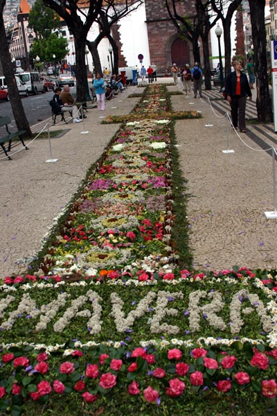 Photo of Flower festival
