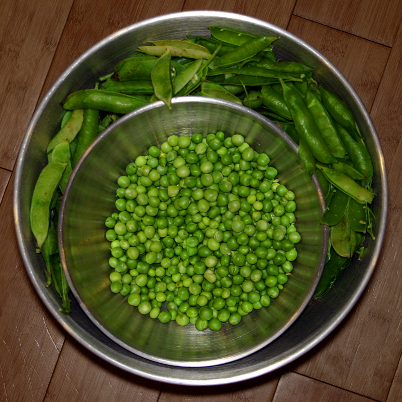 Photo of Peas!